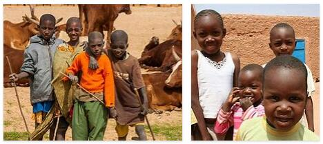 Niger Population 2014